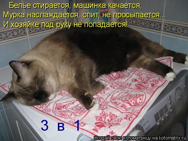 Котоматрица: Белье стирается, машинка качается, Мурка наслаждается, спит, не просыпается... И хозяйке под руку не попадается! 3  в  1