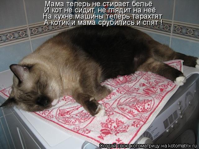 Котоматрица: Мама теперь не стирает бельё И кот не сидит, не глядит на неё На кухне машины теперь тарахтят А котик и мама срубились и спят !