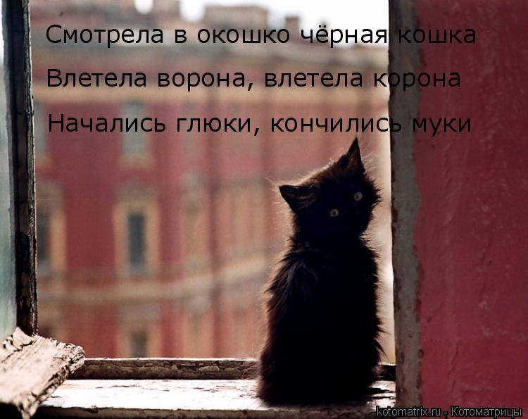 Котоматрица: Смотрела в окошко чёрная кошка Влетела ворона, влетела корона Начались глюки, кончились муки