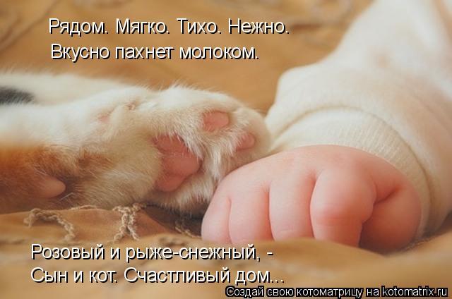 Котоматрица: Сын и кот. Счастливый дом... Вкусно пахнет молоком. Розовый и рыже-снежный, -  Рядом. Мягко. Тихо. Нежно.