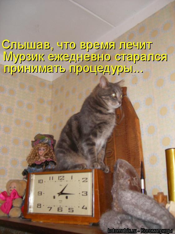 Котоматрица: Слышав, что время лечит Мурзик ежедневно старался принимать процедуры...