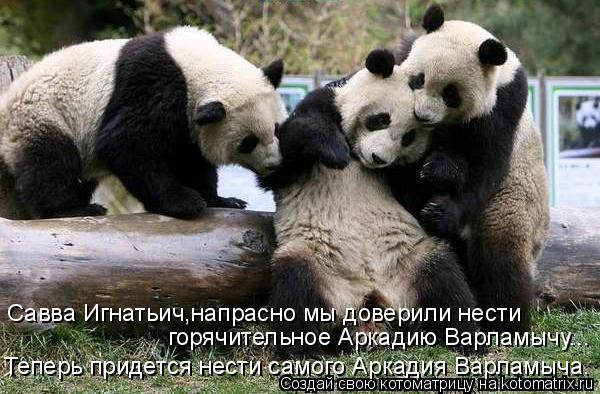 Котоматрица: Савва Игнатьич,напрасно мы доверили нести  горячительное Аркадию Варламычу... Теперь придется нести самого Аркадия Варламыча.