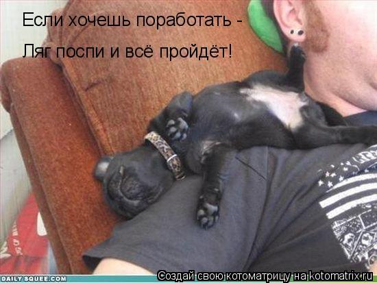 Котоматрица: Если хочешь поработать - Ляг поспи и всё пройдёт!
