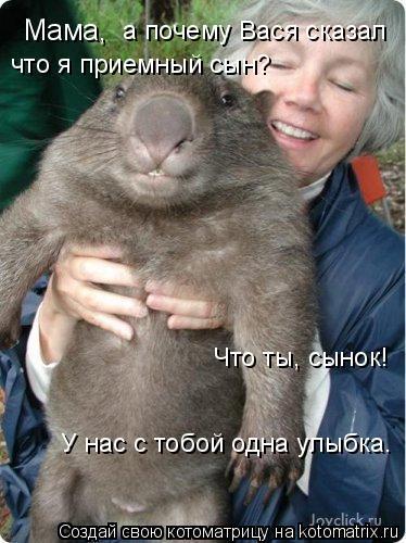 Котоматрица: Мама, а почему Вася сказал что я приемный сын? Что ты, сынок!  У нас с тобой одна улыбка.