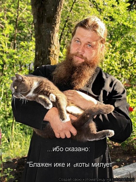 """Котоматрица: ...ибо сказано: """"Блажен иже и   коты милует"""" с"""