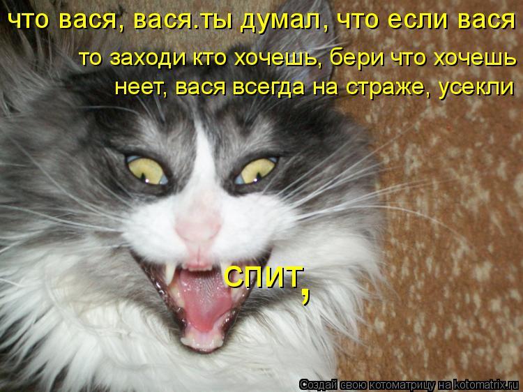 Котоматрица: что вася, вася.ты думал, что если вася  спит , то заходи кто хочешь, бери что хочешь неет, вася всегда на страже, усекли