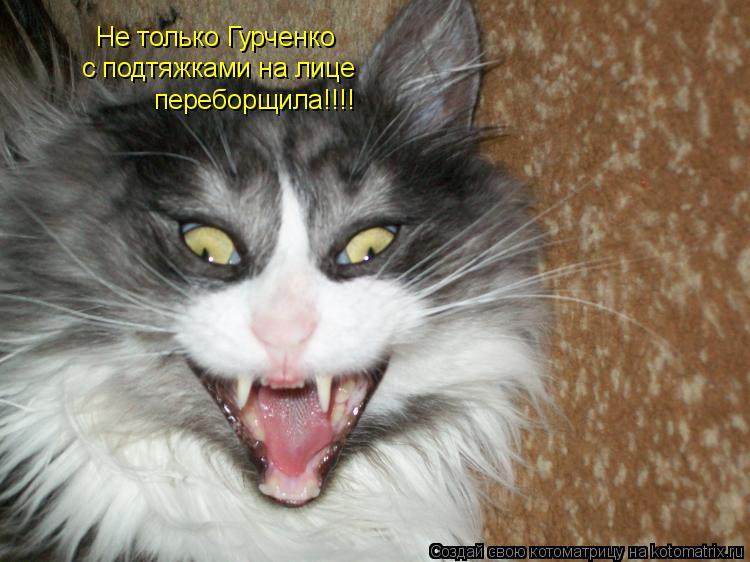 Котоматрица: Не только Гурченко с подтяжками на лице переборщила!!!!