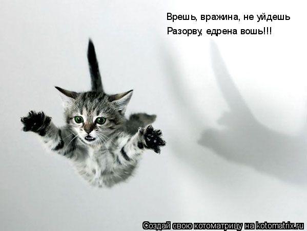 Котоматрица: Врешь, вражина, не уйдешь Разорву, едрена вошь!!!