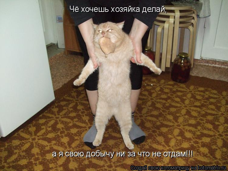 Котоматрица: Чё хочешь хозяйка делай, а я свою добычу ни за что не отдам!!!