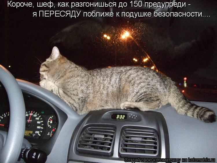 Котоматрица: Короче, шеф, как разгонишься до 150 предупреди - я ПЕРЕСЯДУ поближе к подушке безопасности....