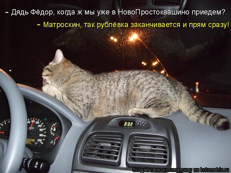 Котоматрица: Дядь Фёдор, когда ж мы уже в НовоПростоквашино приедем? Матроскин, так рублёвка заканчивается и прям сразу! - -
