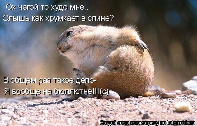 Котоматрица: Ох чегой то худо мне.. Слышь как хрумкает в спине? В общем раз такое дело- Я вообще на бюллютне!!!(с)