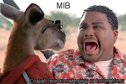 Котоматрица: MIB