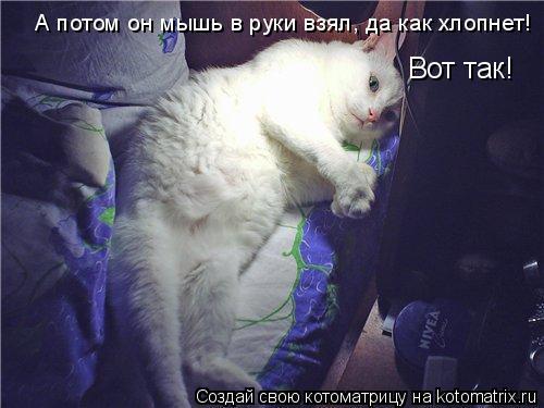 Котоматрица: А потом он мышь в руки взял, да как хлопнет! Вот так!
