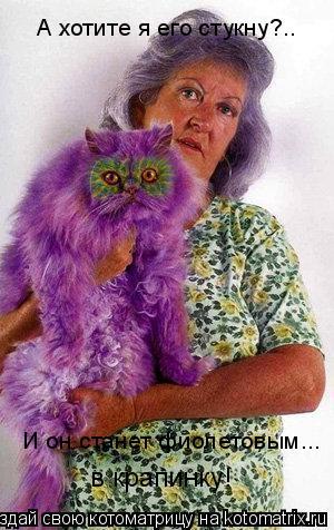 Котоматрица: А хотите я его стукну?..   И он станет фиолетовым...  в крапинку!