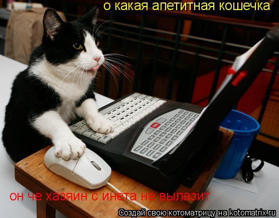 Котоматрица: о какая апетитная кошечка он че хазяин с инета не вылазит
