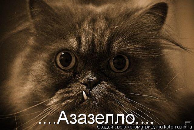 Котоматрица: ....Азазелло....