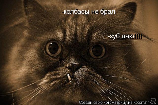 Котоматрица: -зуб даю!!!! -колбасы не брал