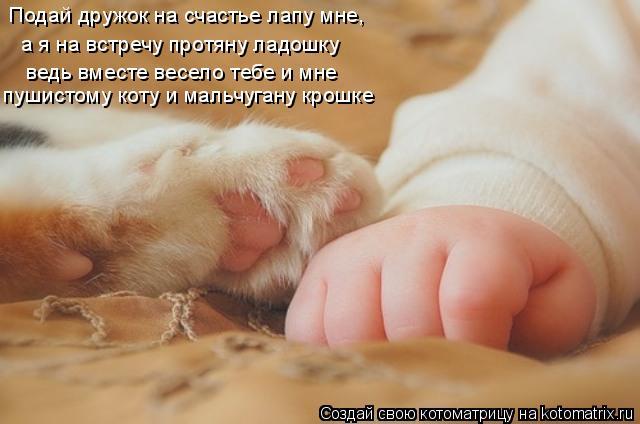 Котоматрица: Подай дружок на счастье лапу мне,  а я на встречу протяну ладошку ведь вместе весело тебе и мне  пушистому коту и мальчугану крошке