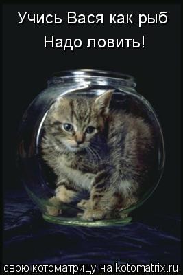 Котоматрица: Учись Вася как рыб Надо ловить!
