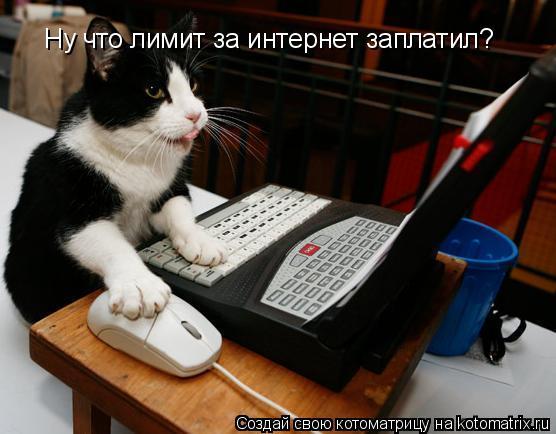 Котоматрица: Ну что лимит за интернет заплатил?