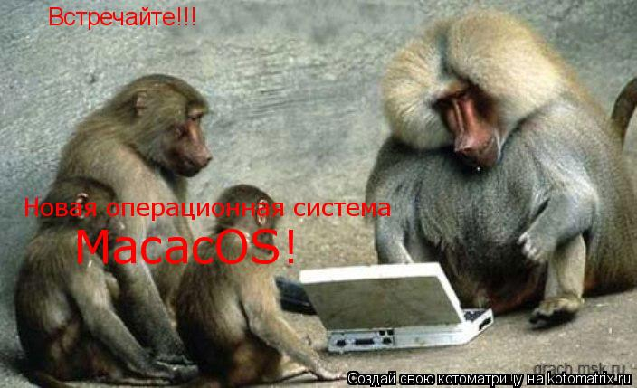 Котоматрица: Встречайте!!! Новая операционная система MacacOS!