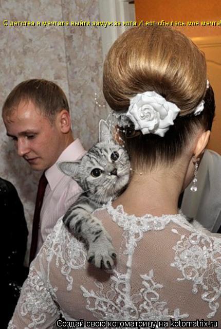 Котоматрица: С детства я мечтала выйти замуж за кота.И вот сбылась моя мечта!
