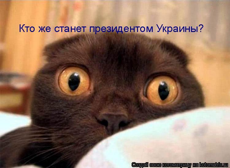 Котоматрица: Кто же станет президентом Украины?