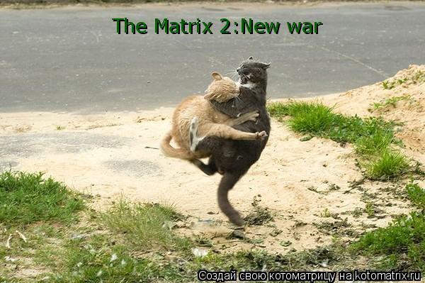 Котоматрица: The Matrix 2:New war