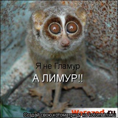 Котоматрица: Я не Гламур  А ЛИМУР!!