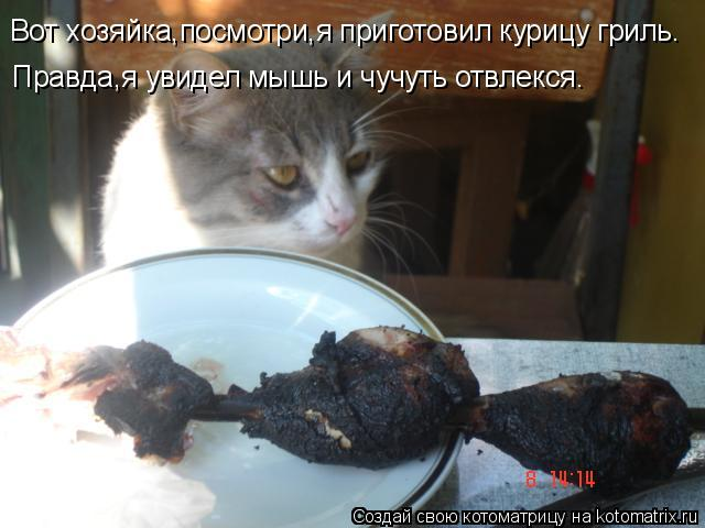 Котоматрица: Вот хозяйка,посмотри,я приготовил курицу гриль. Правда,я увидел мышь и чучуть отвлекся.