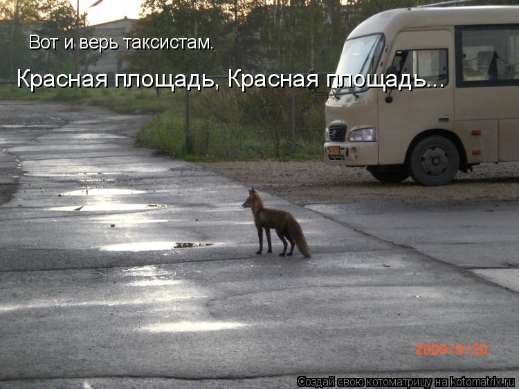 Котоматрица: Вот и верь таксистам. Красная площадь, Красная площадь...