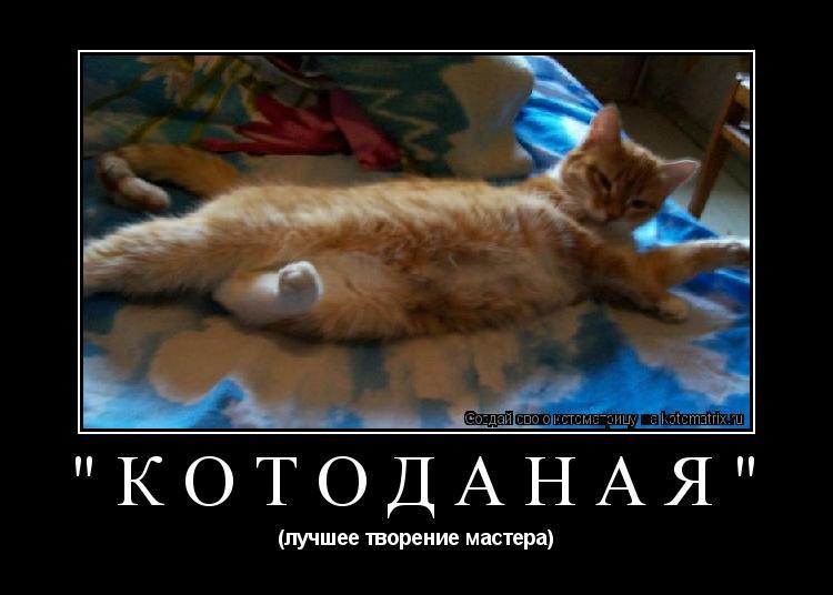 """Котоматрица: """"котоДаная"""" (лучшее творение мастера)"""