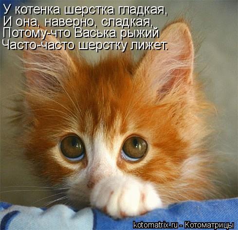 Котоматрица: У котенка шерстка гладкая, И она, наверно, сладкая, Потому-что Васька рыжий Часто-часто шерстку лижет.