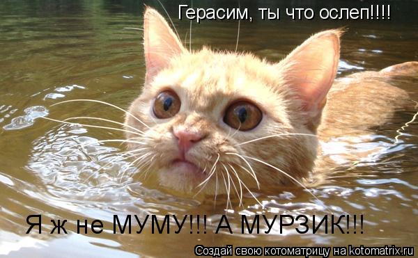 Котоматрица: Герасим, ты что ослеп!!!! Я ж не МУМУ!!! А МУРЗИК!!!