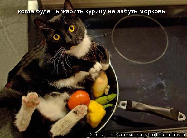 Котоматрица: когда будешь жарить курицу не забуть морковь.