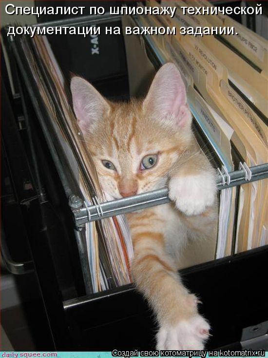 Котоматрица: Специалист по шпионажу технической документации на важном задании.