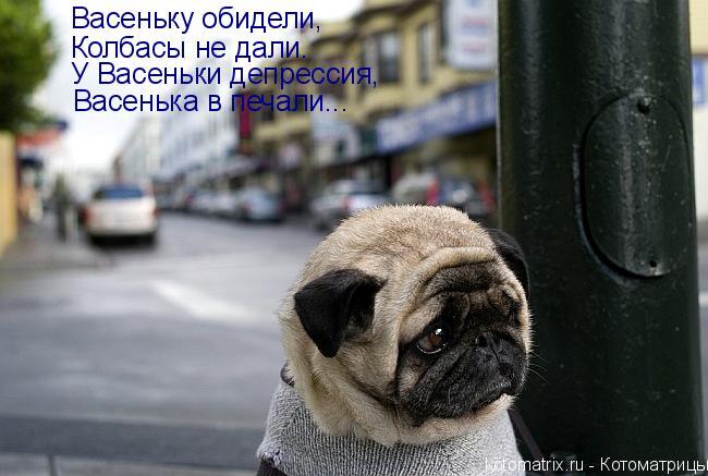 Котоматрица: Васеньку обидели, Колбасы не дали. У Васеньки депрессия, Васенька в печали...