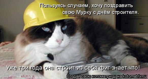 Котоматрица: Пользуясь случаем, хочу поздравить  свою Мурку с днём строителя. Уже три года она строит из себя фиг знает что!