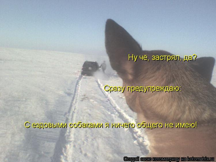 Котоматрица: Ну чё, застрял, да? Сразу предупреждаю: С ездовыми собаками я ничего общего не имею!
