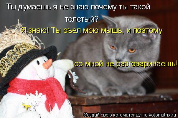 Котоматрица: Ты думаешь я не знаю почему ты такой  толстый?  Я знаю! Ты съел мою мышь, и поэтому  со мной не разговариваешь!