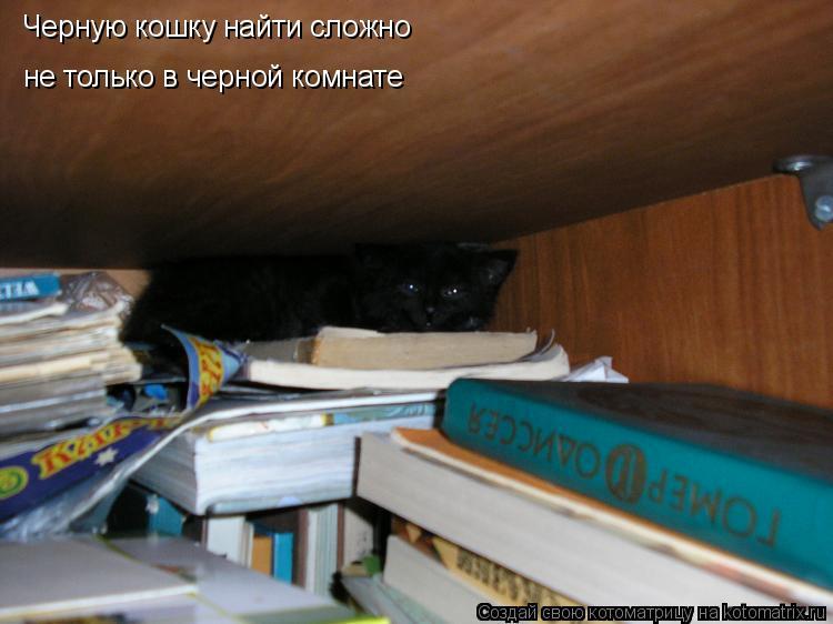 Котоматрица: Черную кошку найти сложно не только в черной комнате