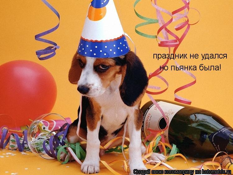 Котоматрица: праздник не удался но пьянка была!