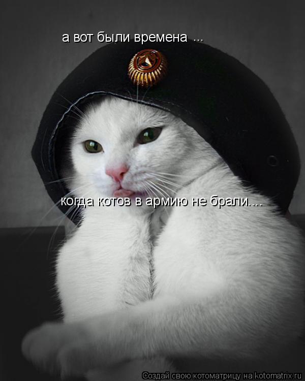 Котоматрица: а вот были времена ... когда котов в армию не брали....