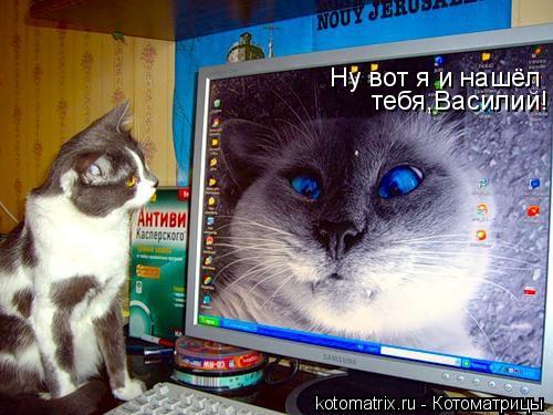 Котоматрица: Ну вот я и нашёл тебя,Василий!