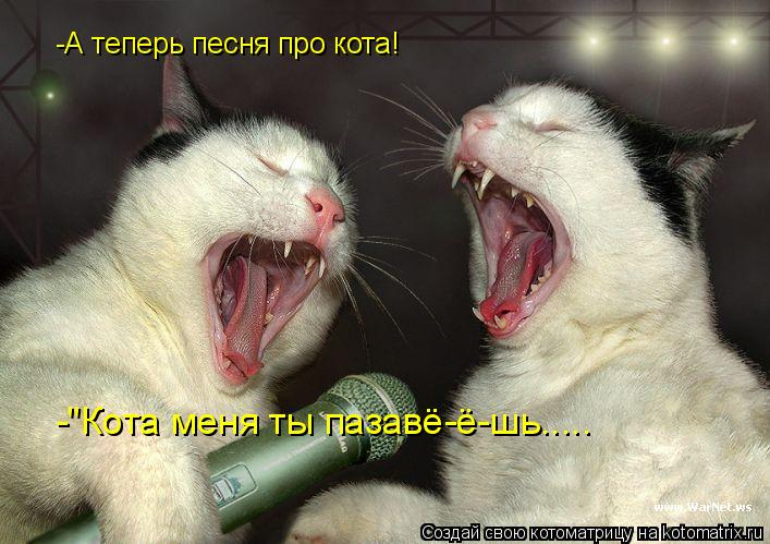 "Котоматрица: -А теперь песня про кота! -""Кота меня ты пазавё-ё-шь....."