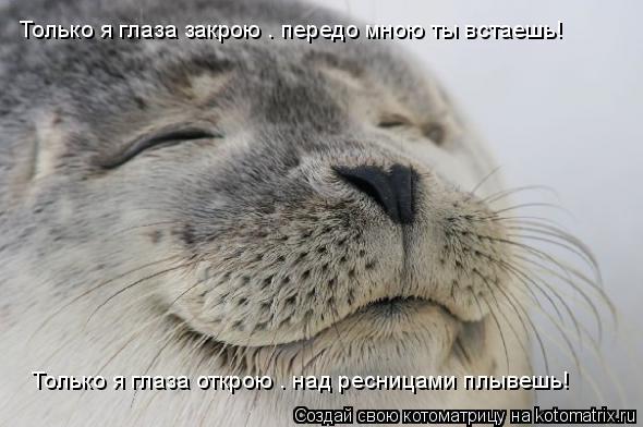 Котоматрица: Только я глаза закрою — передо мною ты встаешь! Только я глаза открою — над ресницами плывешь!