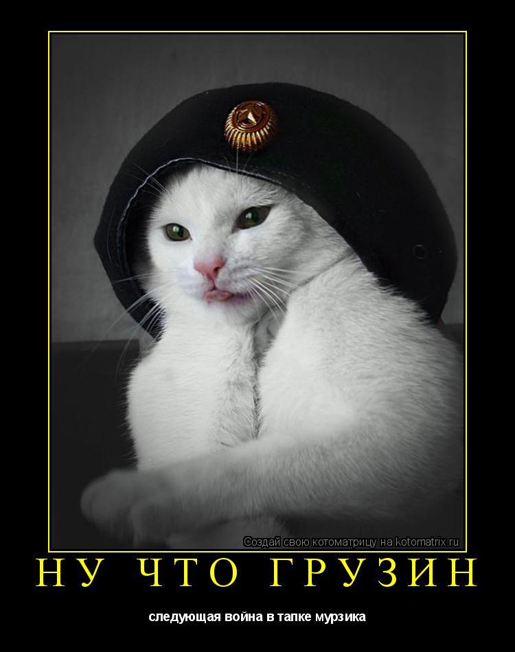 Котоматрица: ну что грузин следующая война в тапке мурзика