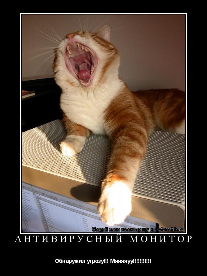 Котоматрица: Антивирусный монитор Обнаружил угрозу!!! Мяяяяуу!!!!!!!!!!!