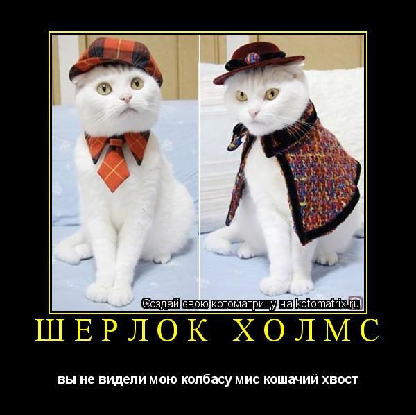 Котоматрица: шерлок холмс вы не видели мою колбасу мис кошачий хвост